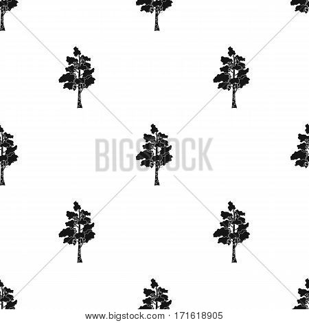 Birch tree icon in black design isolated on white background. Russian country pattern stock vector illustration.