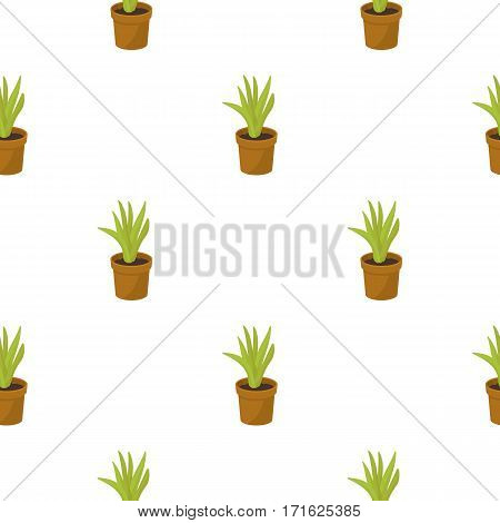 Office plant in th flowerpot icon in cartoon style isolated on white background. Office furniture and interior pattern vector illustration.
