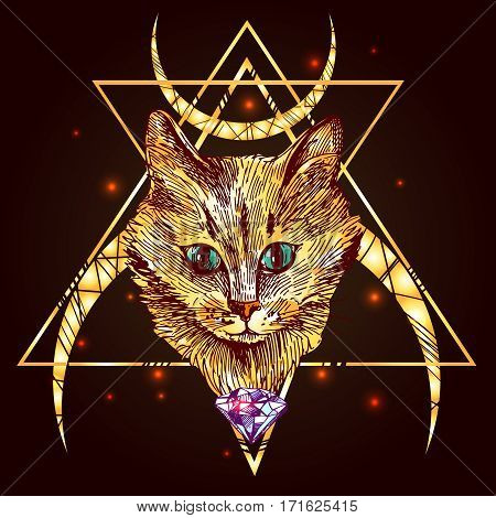 Beautiful hand drawn illustration cat with magic background. Us for card, poster, print for t-shirt, smart phone, handbag, music CD.