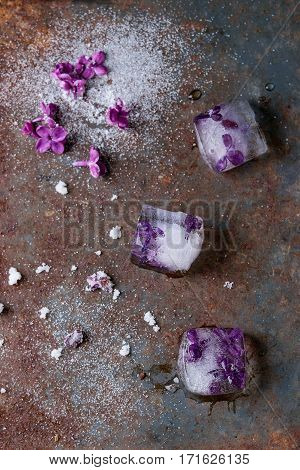 Ice Cubes With Lilac Flowers