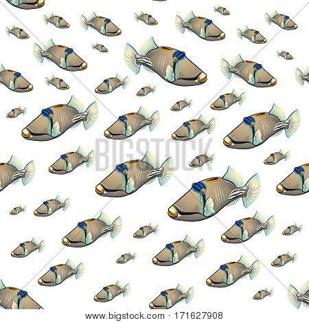 Picasso triggerfish. fish isolated on white background pattern.