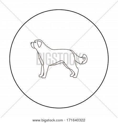 St. Bernard dog vector illustration icon in outline design