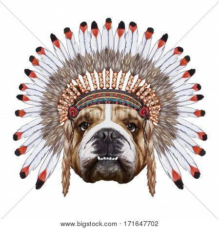Portrait  of English Bulldog  in war bonnet. Hand-drawn illustration, digitally colored.
