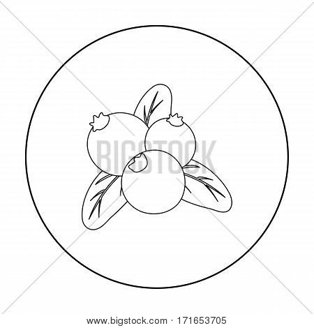 Cranberry icon in outline style isolated on white background. Canadian Thanksgiving Day symbol vector illustration.