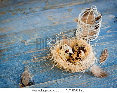 quail eggs and feathers on a blue wooden background
