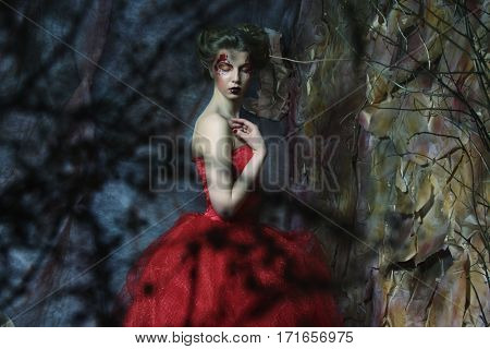 Portrait of a beautiful woman in medieval era dress. Shot in a s