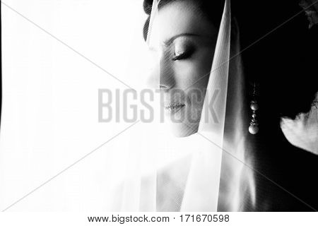 The Tenderness Bride
