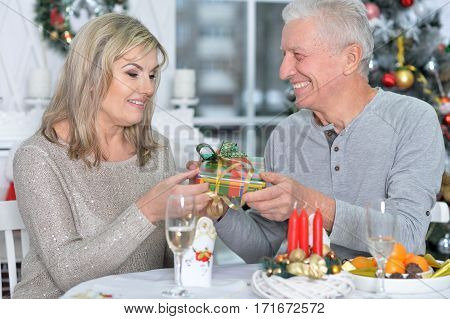 Portrait of a mature couple in restaurant on holiday