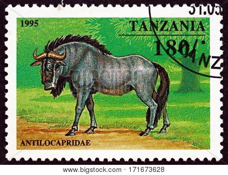 TANZANIA - CIRCA 1995: a stamp printed in Tanzania shows Antilocapridae circa 1995