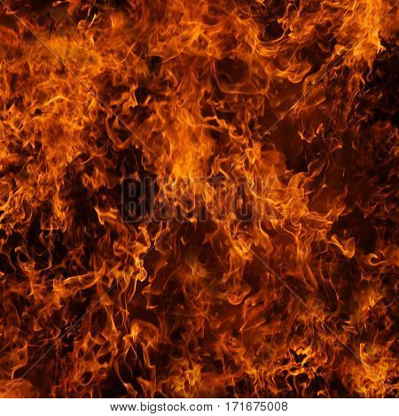 Background of fire. The big fire, the red flame, the fire texture. Back with fire. Burning bright.