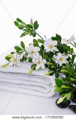 Branch gardenia on towel