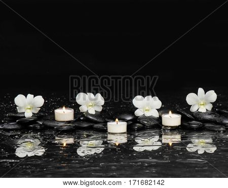 still life with white orchid and white candle on black stones