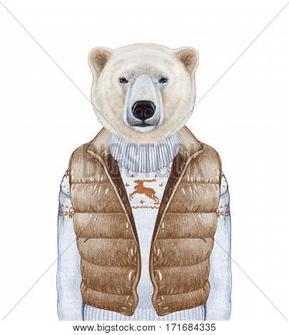 Animals as a human. Polar Bear in down vest and sweater. Hand-drawn illustration, digitally colored.