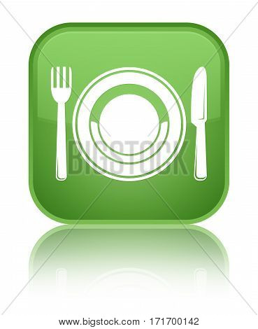Food Plate Icon Shiny Soft Green Square Button