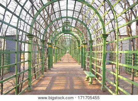 Passage in Summer Garden. in St.Petersburg at sunny spring evening Russia.