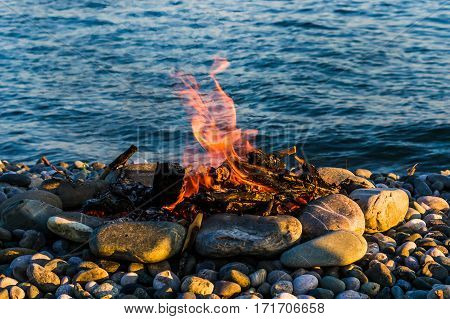 Bonfire on the rocky beach. Romantic travel camp life. Bask in the fire