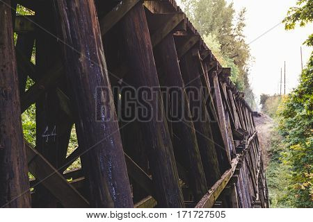 Wooden beams of a railway bridge or train trestle in the lush forest of Newberg Oregon USA.
