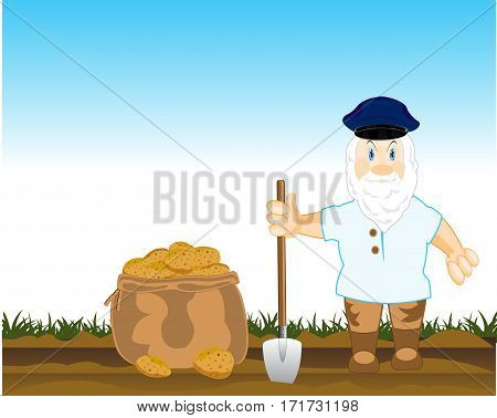 The Man in field digs the potatoes.Vector illustration