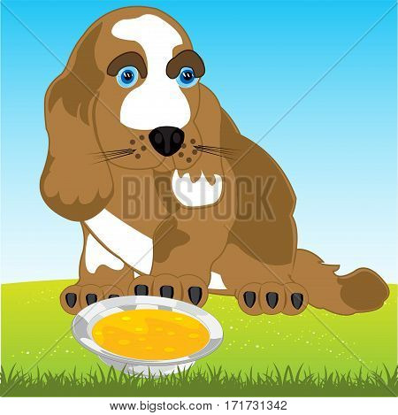 Dog on year glade and tureen with meal