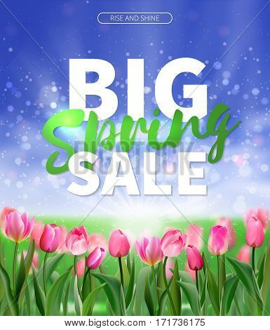 Spring sale background with tulips. EPS 10 vector royalty free stock illustration for greeting card, ad, promotion, poster, flier, blog, article, social media, marketing