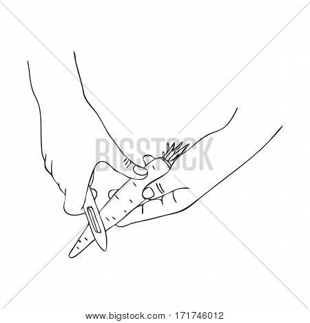 cooking hand with peel knife and carrot, line drawing isolated symbol at white background