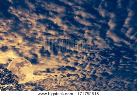 Cloudscape. Nightly Sky With Moon Behind Tree. Outdoors At Nighttime. Sepia Tone.