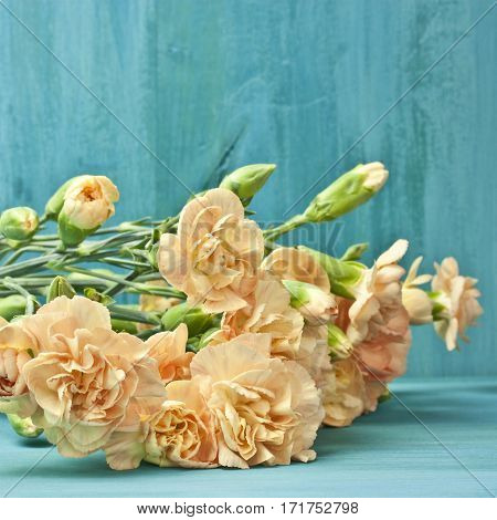 A square photo of a bouquet of tender carnations on vibrant turquoise blue background with copyspace. A greeting card or invitation design template