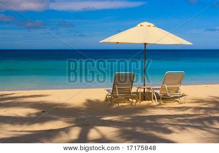 Paradise Beach, Sunny and Blue Sky