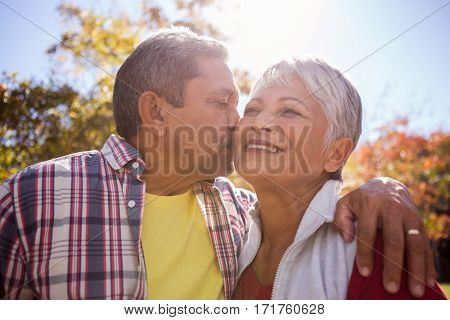 An elderly man kissing his wife in the park
