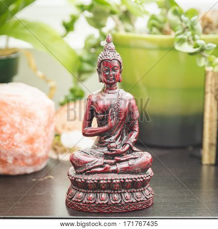 Religious figure or sculpture plants crystal salt rock and other decorations on a shelf or bookcase.