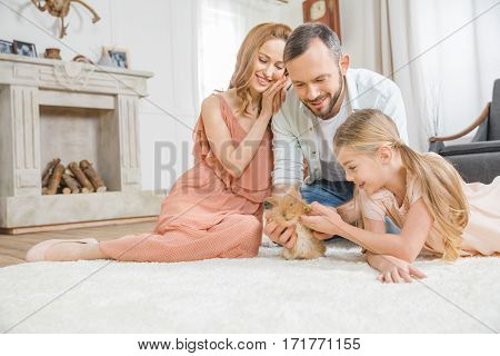Happy family playing with cute fluffy rabbit on white carpet at home