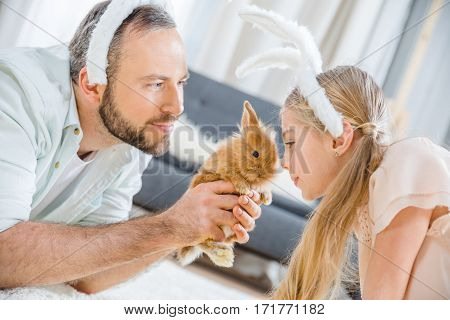 Portrait of father and daughter in bunny ears playing with cute rabbit