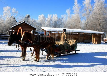 Taltsy. Irkutsk. Russia - January 7, 2014: Winter in Siberia. Coachman dressed in warm clothes and a Russian sleigh pulled by three horses in January 7, 2014 in Taltsy, Russia