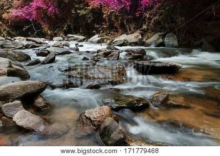 waterfalls in the wilderness ,green nature forest