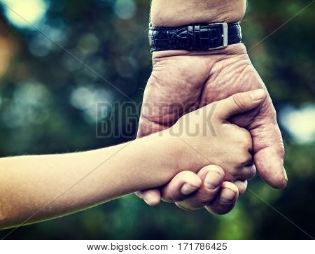 Toned Photo of Adult and Kid Hands on the Nature Background closeup