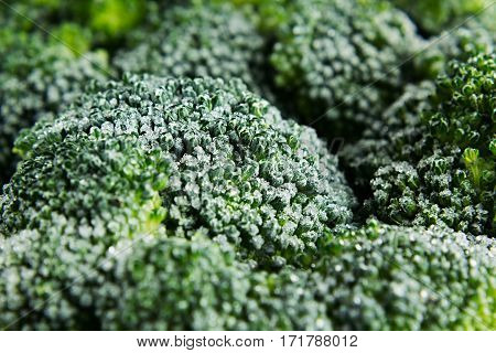 Fresh frozen green broccoli with hoarfrost closeup as background. Healthy vitamin food.