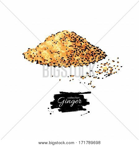Ginger root powder vector hand drawn illustration. Artistic style flavor. Herbal spice pile. Detox food ingredient.