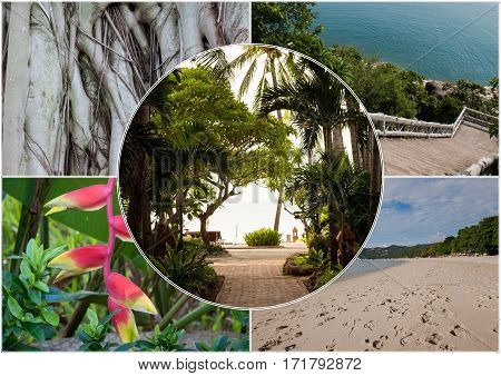 Beach on the tropical island at Thailand. Flowers. Collage