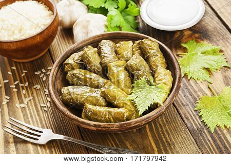 Dolma On The Plate