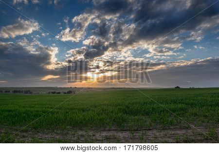 Large Panoramic View Of Amazing Beautiful Sunset On Infinity Green Fields After Rainy Day