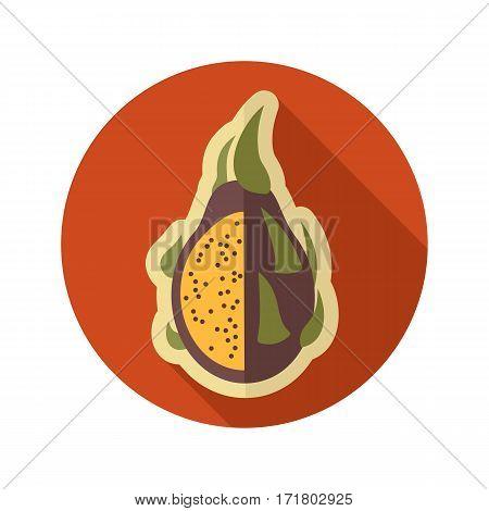 Pitaya flat icon. Tropical dragon fruit. Vector illustration eps 10