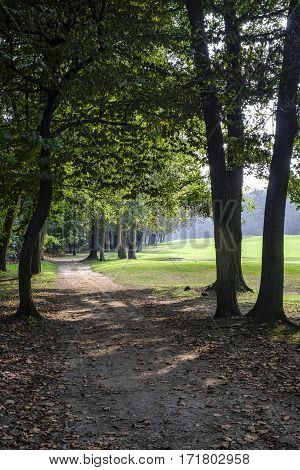 Monza (Brianza Lombardy Italy) : the park in autumn