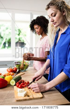 Young female friends preparing food at kitchen table