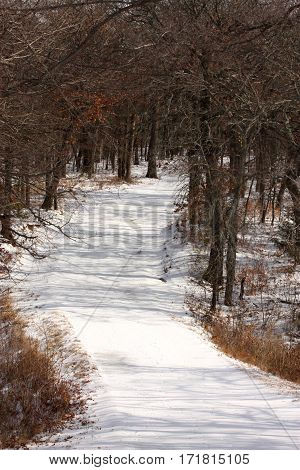 A country trail, winding through the woods and covered in snow.