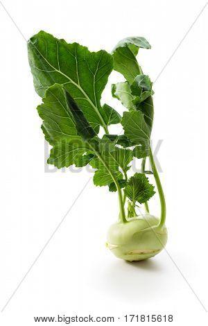 Single fresh kohlrabi with green leaves.