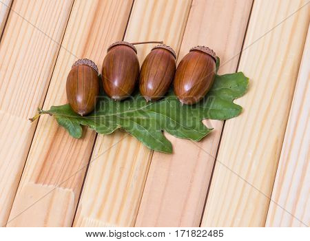 Four acorns with leaves on a wooden background.