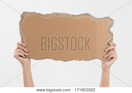 woman two hands holding empty piece of cardboard with copy space isolated on white background.
