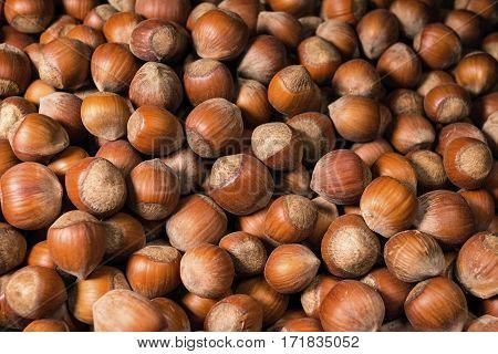 A pile of shelled hazelnuts rotating smoothly and slowly. Macro shot.