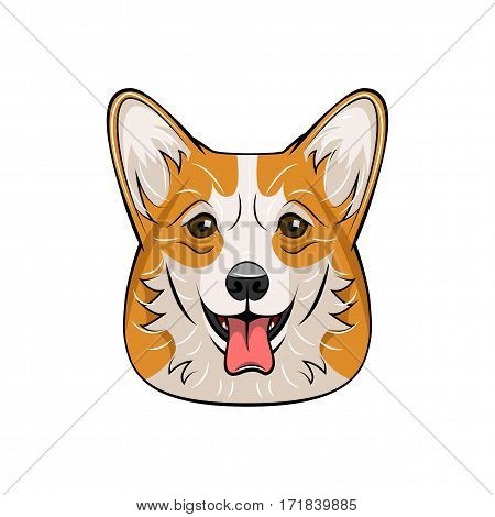 Vector welsh corgi dog face. Illustration isolated on white background