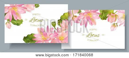 Vector botanical horizontal banners with pink lotus flowers. Design for natural cosmetics, health care and ayurveda products, yoga center. Can be used as greeting card or wedding invitation